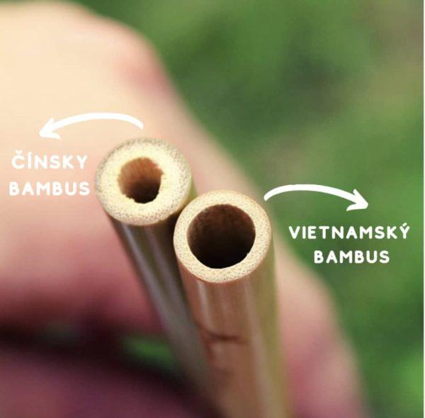 Vietnamský bambus vs Čínsky bambus