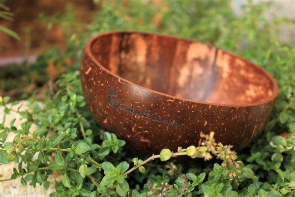 kokosová miska v prírode